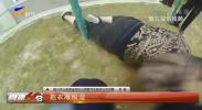 男子醉酒绿化带 民警紧急救助-200325