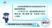 曝光台:宁夏应急管理厅就安全生产事故发布预警信息-200320