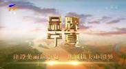 品牌宁夏-200325