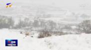 国网固原供电公司:雪中特巡 确保线路设备运行安全可靠-200305