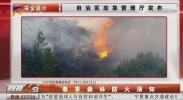 春季森林防火须知-200422