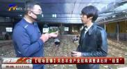 """吴忠农业产业结构调整调出好""""钱景""""-200424"""