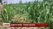 初夏时节农事忙 科技助力促丰收-200511