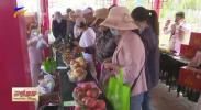灵武市2020年乡村文化旅游节开幕-200522