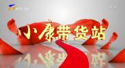 青铜峡:葡萄香飘韦桥村 盛夏时节采摘忙-200627