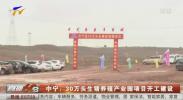 中宁:30万头生猪养殖产业园项目开工建设-200629