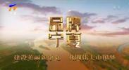 品牌宁夏|黄河第一古灌区-200608