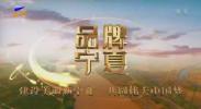 品牌宁夏-200622