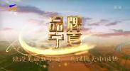 品牌宁夏20200728