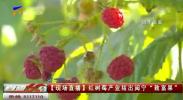 """红树莓产业结出闽宁""""致富果""""-20200831"""