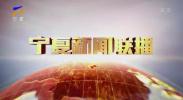 宁夏新闻联播(卫视)-20200829