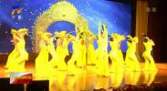 中国残疾人艺术团《我的梦》百县百场公益巡演走进西吉县和海原县-20200925