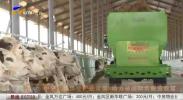 中宁:狠抓牛产业发展 助力贫困群众脱贫致富-20200916