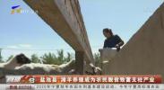 盐池县:滩羊养殖成为农民脱贫致富支柱产业-20200915
