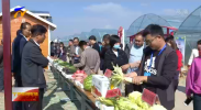 2020全国特色农产品经销商宁夏行第二季活动走进石嘴山-20200926