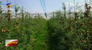 建设河流域生态保护和高质量发展先行区|彭阳智慧水利开创农业新天地-20200920