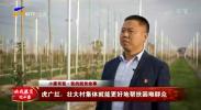 小康有我·我的脱贫故事丨虎广红:壮大村集体就能更好地帮扶困难群众-20201017