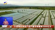 宁夏绿色食品产业产值目标瞄准1500亿元-20201018