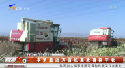 平罗县近万亩红高粱喜获丰收-20201017