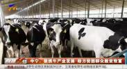 中宁:狠抓牛产业发展  助力贫困群众脱贫致富-20201007