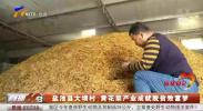 盐池县大坝村:黄花菜产业成就脱贫致富梦-20201007