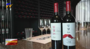 第九届宁夏贺兰山东麓国际葡萄酒博览会10月22号至23号在银川举行-20201016