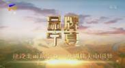 品牌宁夏-20200930