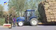 晚间快讯丨贺兰:联合执法严厉打击农业机械违法行为-20201019