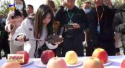丰收十月赛苹果-20201015