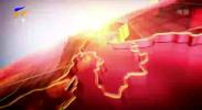 宁夏新闻联播(卫视)-20201106