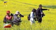 扶贫印记|隆德县前庄村:昔日贫困村变身热门观光地-20201106