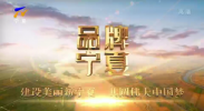 品牌宁夏-20201123