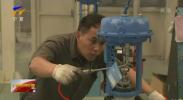 宁夏加大专技人才培养助推重点产业发展-20201109