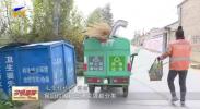 中宁:农村生活垃圾分类处理让乡村更美丽-20201110