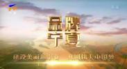品牌宁夏-20201117