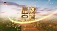 品牌宁夏-20201110