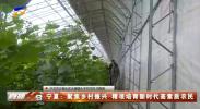 宁夏:聚焦乡村振兴 精准培育新时代高素质农民-20201108