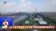 宁夏出台民营企业28条 为经济高质量发展添活力-20201108