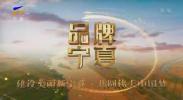 品牌宁夏-20201125