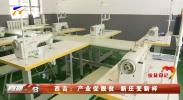 西吉:产业促脱贫 新庄变新样-20201128
