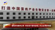 晓鸣农牧顺利过审 将实现宁夏创业板上市企业零的突破-20201106