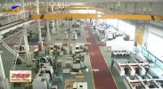 宁夏在九大重点特色产业领域实行常态化项目储备机制-20201116