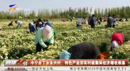 中宁余丁乡永兴村:特色产业夯实村级集体经济增收根基-20201201