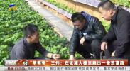 """""""草莓哥""""王伟:在设施大棚里趟出一条致富路-20201229"""