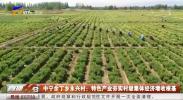 中宁余丁乡永兴村:特色产业夯实村级集体经济增收根基-20201204