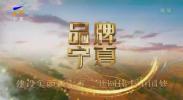 品牌宁夏-20201203