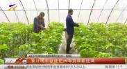 黄河银行建立金融与产业双循环机制 助力乡村振兴-20201209