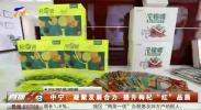 """中宁:凝聚发展合力 提升枸杞""""红""""品质-20201209"""
