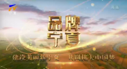品牌宁夏-20201202