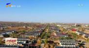 红寺堡:电力照亮乡亲们的幸福生活-20201214